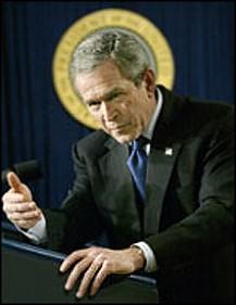 Bush Under Halo